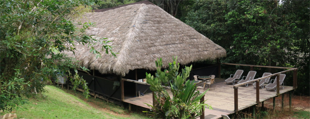 Cuyabeno Lodge Restaurant