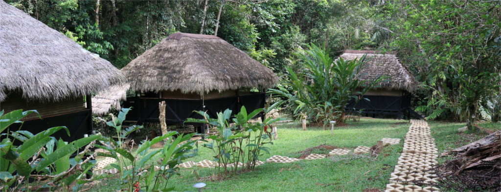 Cabanas Cuyabeno Lodge